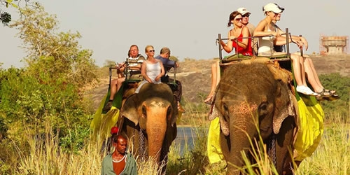 Nature Tour - Discover Lanka Tours